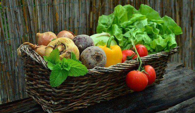 Ich ernähre mich paläo, vegetarisch, low carb, high carb – ja, wie denn nun?